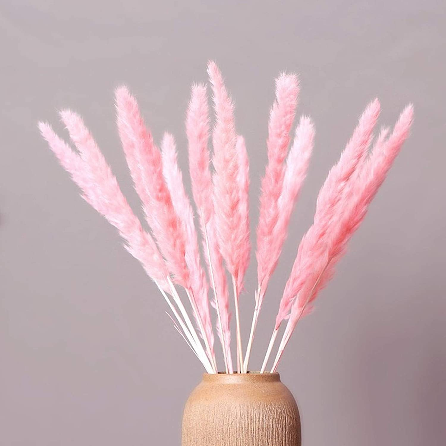XIYUAN Natural Dried Reed Flowers,Dried Pampas Grass Plumes 30pcs 17 Inch Tall Natural Phragmites Artificial Faux Reed Flower Stems Bunch -for Home Decoration, Wedding Photo Props (Pink)