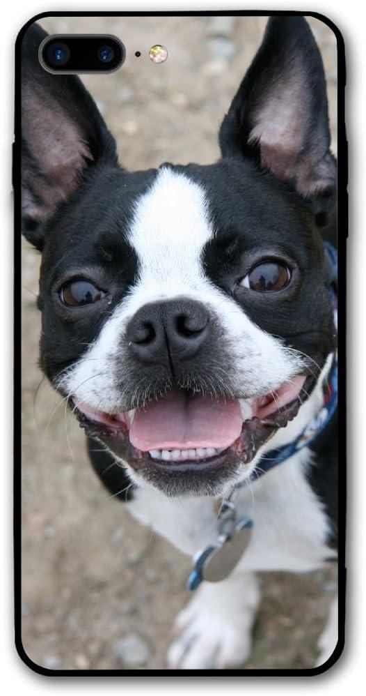 Boston Terrier Dog Puppies iphone case