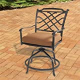 Willowbrook Cast Aluminum Outdoor Swivel Balcony Chair with Seat Cushion - Set of 2