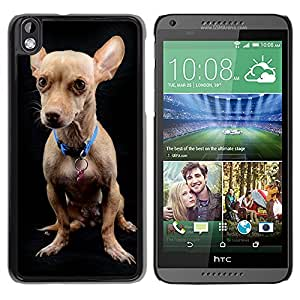 GoGoMobile Slim Protector Hard Shell Cover Case // M00118000 Dog Chihuahua Animal Breed Friend // HTC Desire 816