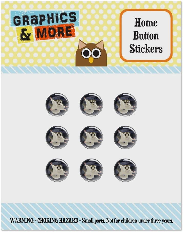 Sugar Glider of The Night Set of 9 Puffy Bubble Home Button Stickers Fit Apple iPod Touch, iPad Air Mini, iPhone 5/5c/5s 6/6s 7/7s Plus