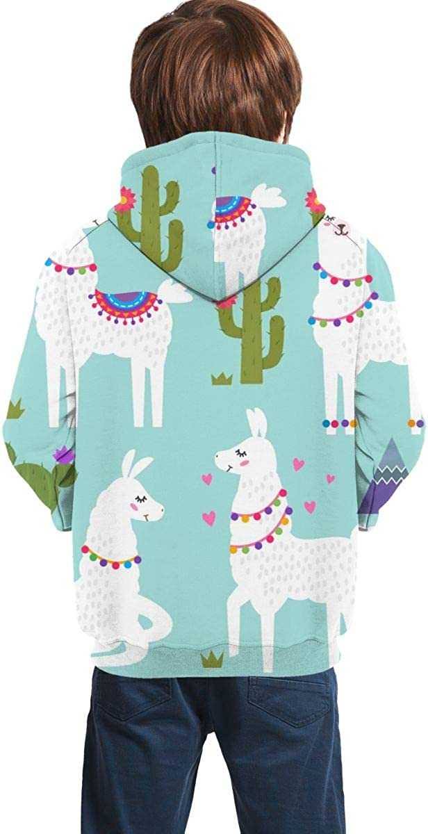 Lichenran Funny Llama Alpaca with Mountains and Cactus Men 3D Print Pullover Hoodie Sweatshirt with Front Pocket