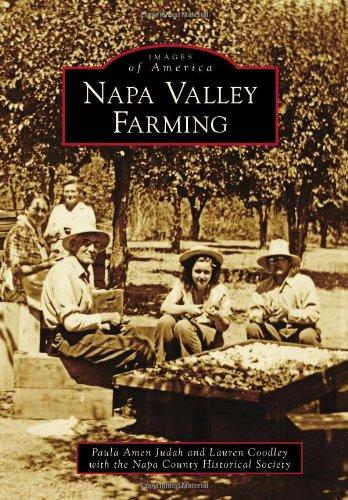 napa valley food - 8