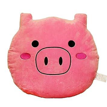 Amazon.com: EvZ Emoji Smiley Emoticon Cojín de peluche suave ...