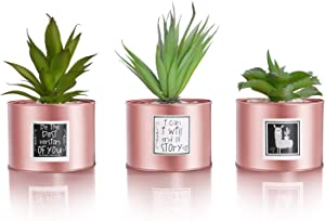 Be Sunny Rose Gold Office Decor for Women Desk - Cactus Decorations - Set of 3 Fake Succulent in Luxury Pots - Llama and Inspirational Signs Included - Desk Decorations for Women Office and Home Decor