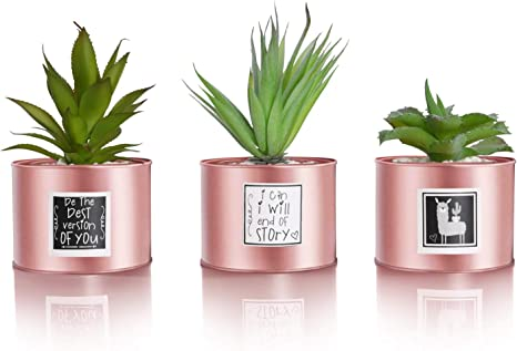 Amazon Com Be Sunny Rose Gold Office Decor For Women Desk Cactus Decorations Set Of 3 Fake Succulent In Luxury Pots Llama And Inspirational Signs Included Desk Decorations For