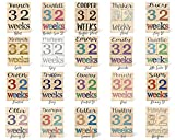 Baby Age Blocks - NO STICKERS - 20 Color Scheme Options! (Example: Teal) - Baby Milestone Blocks