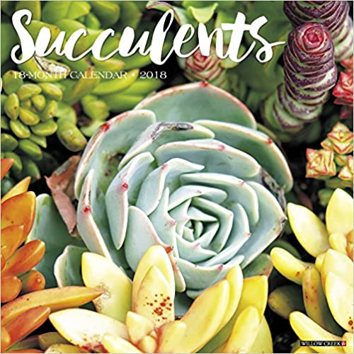 Succulents 2018 Wall Calendar Download.zip 61H465nOVGL._SY498_BO1,204,203,200_