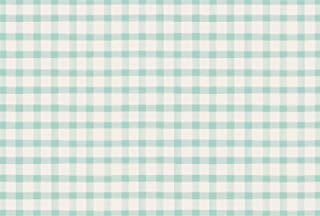 product image for Hester and Cook Paper Placemats for Dining Table - Seafoam Buffalo Check Plaid Pattern Place Mats for Parties - 24 Sheets Per Pad American Made
