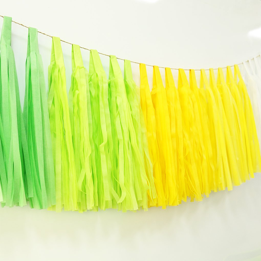 Tissue Paper Tassel Garland Wedding Bridal Birthday Baby Shower Party Decorations DIY 25 pcs Blue White
