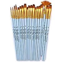 Goolsky 20pcs Draw Paint Brushes Set Kit Artist Paintbrush Multiple Mediums Brushes with Nylon Hair for Artist Acrylic…