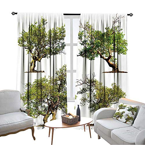 (NineHuihome Rod Pocket Drapes and Curtains Sun Blocking Curtains for Living Room/Bedroom Tree Isolated On White Chinese Garden Bonsai)