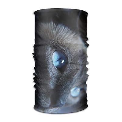 Creative Halloween Black Cat 2 Headband Bandana Mask Sports Seamless Breathable Hair Band Turban For Workout, Fitness, Running, Cycling, Yoga
