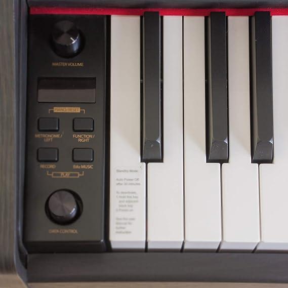 Pianova P-191 RW - Pack Piano Digital con 88 Teclas ...