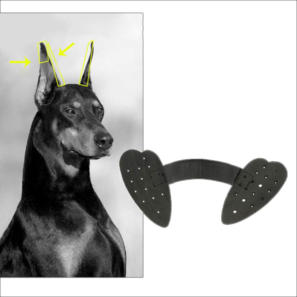 B Blesiya Pet Dog Ear Care Tools Oreja Erecta De Pie para Perro Pastor Alem/án Negro