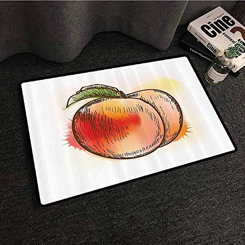 (Peach Non-Slip Door mat Fresh Fruit Full of Vitamins and Nutrition Food Sketch Color Splatters with Anti-Slip Support W31 xL47 Cloth)