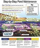Crystal Blue Natural Pond Cleaner - Muck and Sludge Remover, Safe for Koi - 1 Gallon