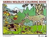 Sierra Wildlife Coloring Book