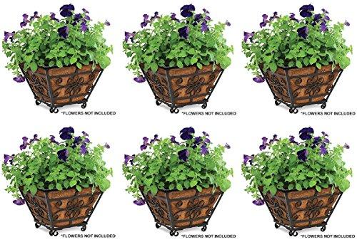 Panacea Products 83545 14'' Quatrefoil Square Planter w Coco Liner - Quantity 6 by Panacea
