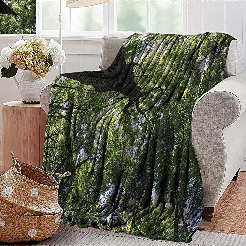 Micro Decal Canopy - Xaviera Doherty Outdoor Blanket Forest,Summer Tree Canopy Leaves Microfiber All Season Blanket for Bed or Couch Multicolor 50