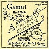 Academie Cello d-2 Pistoy Gut Medium Gauge