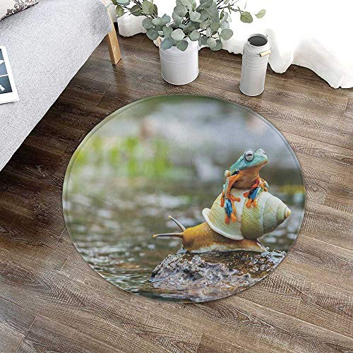TecBillion Funny Water Absorption Non Slip Mat,Cute Colorful Frog Above The Snail Riverscape Water Rock Mollusks Amphibian Animals for Corridor Study Room Bathroom,23.62