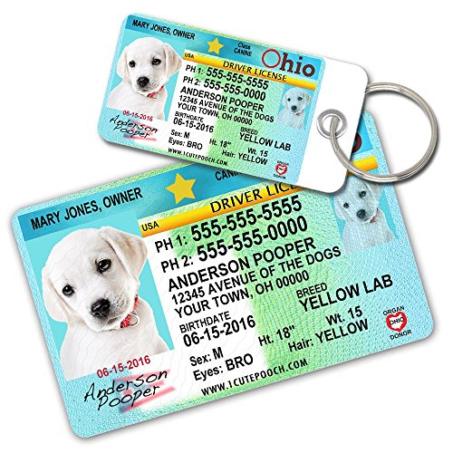 License Pet Tag - Ohio Driver License Custom Dog Tags for Pets (2) and Wallet Card - Personalized Pet ID Tags - Dog Tags For Dogs - Dog ID Tag - Personalized Dog ID Tags - Cat ID Tags - Pet ID Tags For Cats