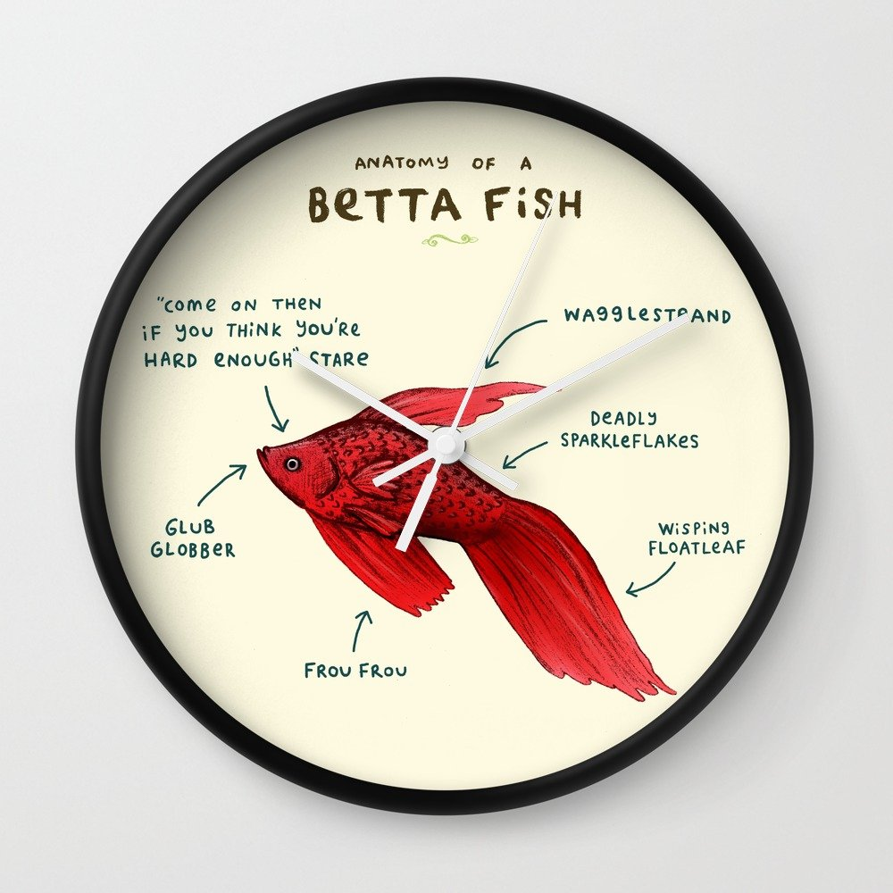 Society6 Anatomy Of A Betta Fish Wall Clock Black Frame White Hands