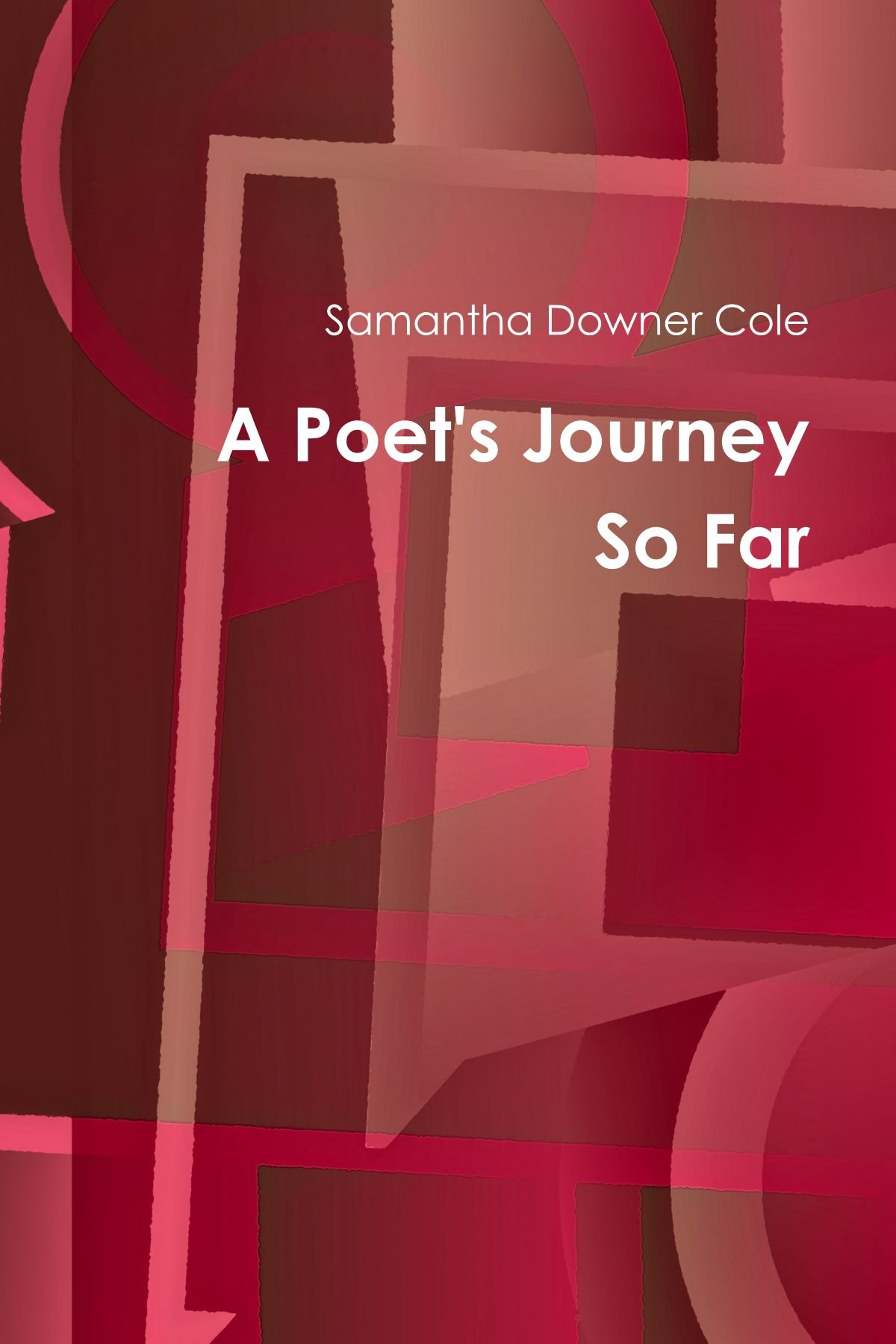 A Poets Journey So Far
