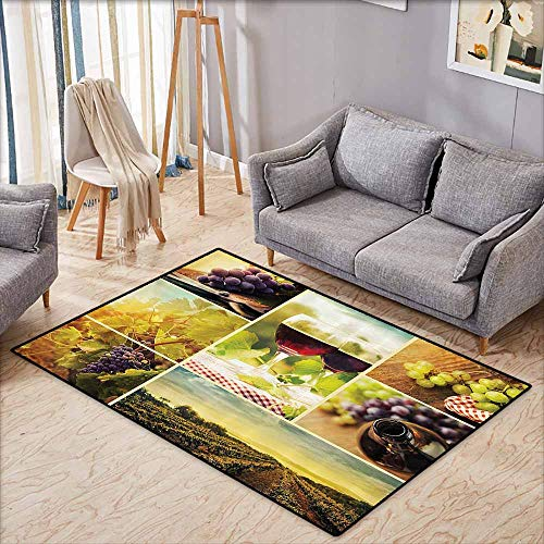 (Bedroom Rug,Home Decor Collection,Rustic Style Collage of Wine Glass Grapes and Vineyard Qualified Harvest Village Picture Art,Ideal Gift for Children,3'3
