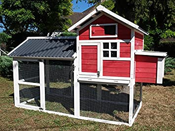 Gallinero Red Dust techo PVC 6 A 8 gallinas: Amazon.es: Productos para mascotas