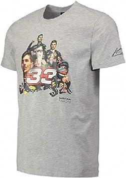 Camiseta Red Bull Racing F1 Team Max Verstappen 33 para hombre: Amazon.es: Deportes y aire libre