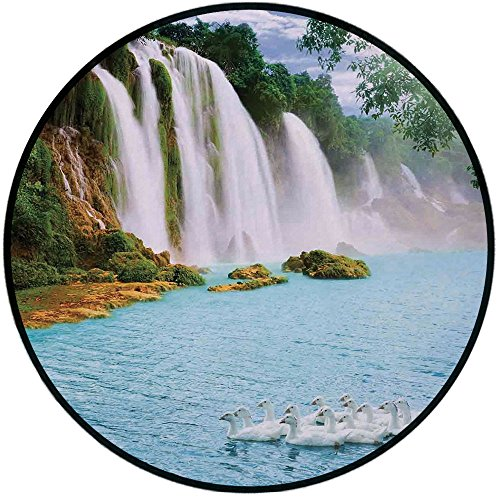 Red Rug Grand Trunk - Printing Round Rug,Waterfall,Image of a Grand Waterfall with Swans in the Lake Sunny Day Nature Print Mat Non-Slip Soft Entrance Mat Door Floor Rug Area Rug For Chair Living Room,Blue Green White