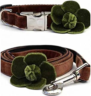"product image for Diva-Dog 'Camellia Velvet Olive' Custom Small Dog 5/8"" Wide Dog Collar with Plain or Engraved Buckle, Matching Leash Available - Teacup, XS/S"