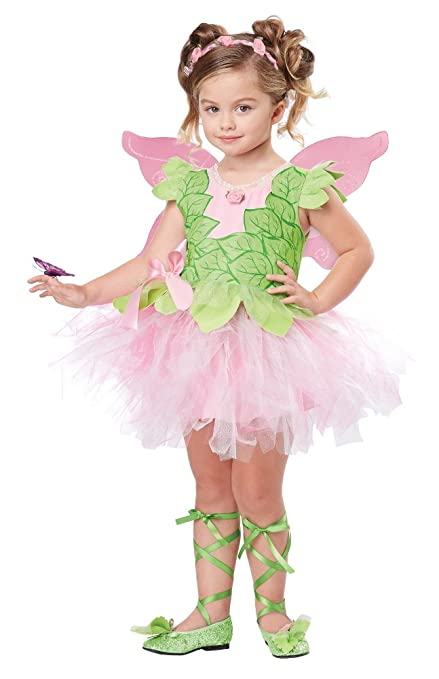 California Costumes Blossom Fairy Costume One Color 3-4  sc 1 st  Amazon.com & Amazon.com: California Costumes Blossom Fairy Costume One Color 3 ...