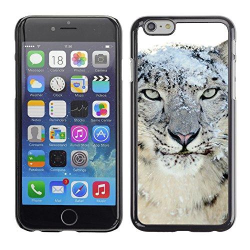 "Premio Sottile Slim Cassa Custodia Case Cover Shell // V00003860 léopard des neiges // Apple iPhone 6 6S 6G 4.7"""