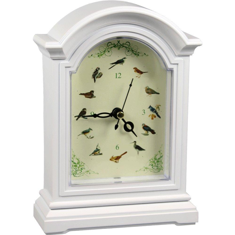 Orologio Deco Canzoni di uccelli Genius Ideas /® Set de 4