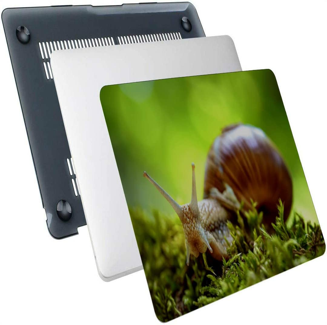 MacBook Pro13 Inch Case Snail Glid On The Wet Wooden Plastic Hard Shell Compatible Mac MacBook Laptop Cover Protection Accessories for MacBook with Mouse Pad