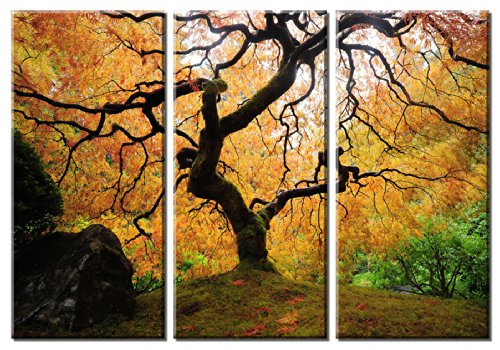 ramed Huge 3-Panel Landscape Art Maple Tree Japanese Garden Giclee Canvas Art ()