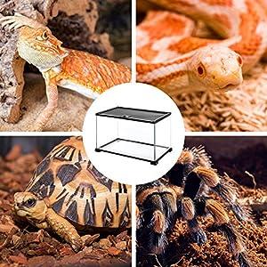 REPTI ZOO Full Glass Reptile Terrarium 15 Gallon 20 x 12 x 14, Small Reptile Enclosure Cage for Reptile Amphibian Small Animals, Top Screen Ventilation & Feeding (Tamaño: 20x12x14)