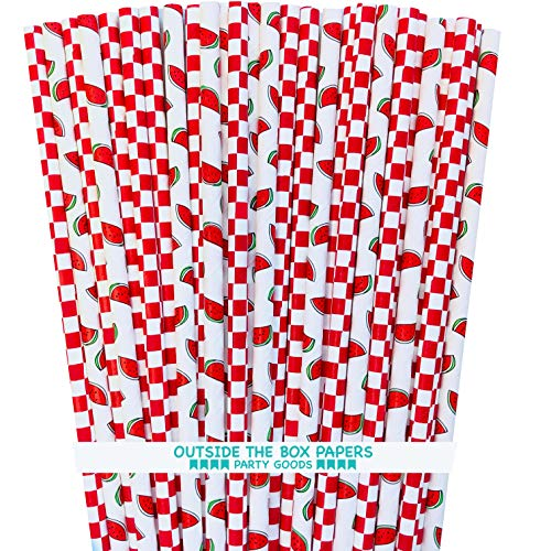 (Watermelon and Red Checkered Paper Straws - Picnic Supply - 100 Pack)