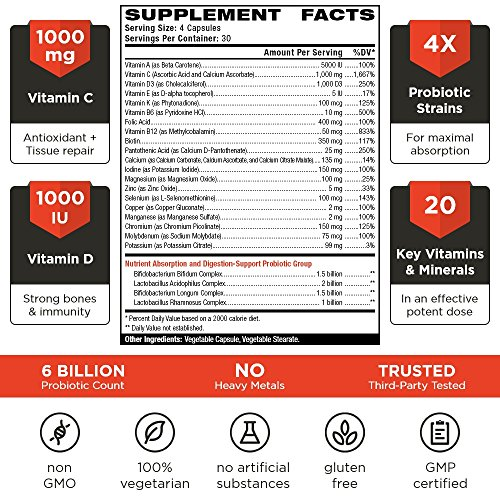 VINTAGE BASE 2 in 1 Daily Multivitamin Supplement with Probiotics for Men and Women Maximal Absorption Immune System, Digestion & Intestinal Flora Booster 120 Natural Veggie Pills