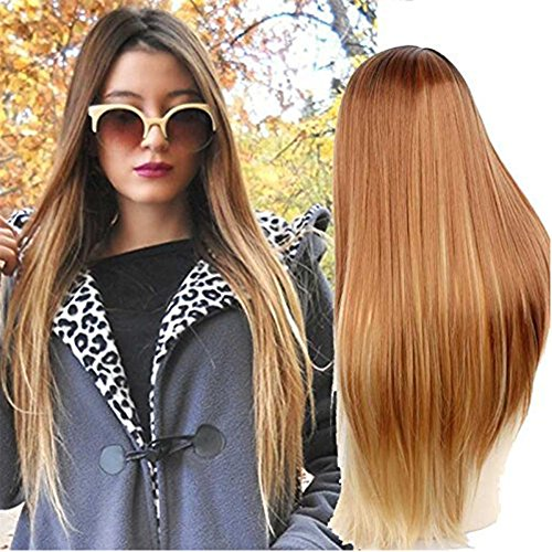 Netgo Blonde Ombre Wig Dark Roots Long Straight Black To Brown Synthetic Full Wigs For Women (Dark Blonde Wig)