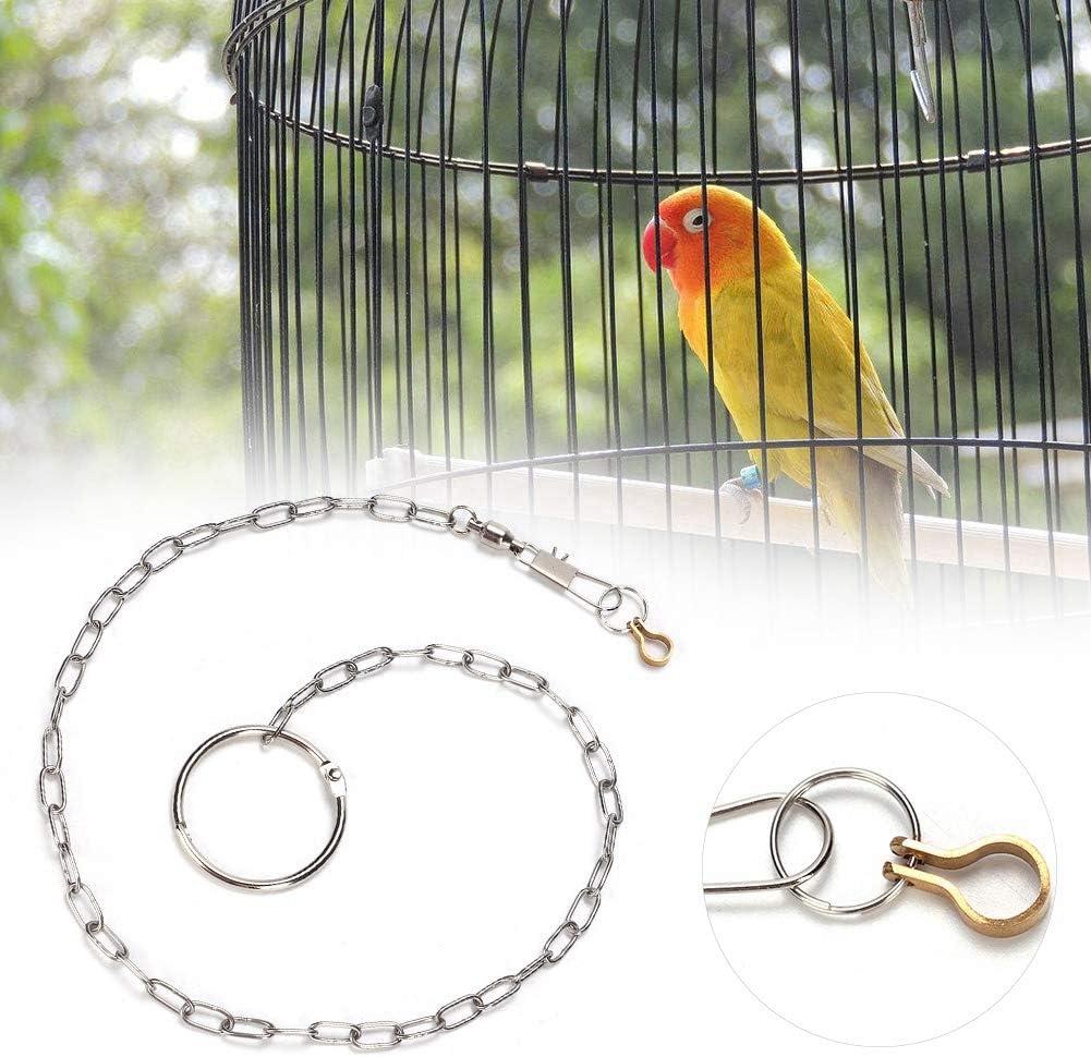 HEEPDD Loro Cadena para pies Acero Inoxidable Anti Flying Pet Birds Tobilleras Anillo de Entrenamiento Arnés para Diferentes Tipos y tamaños de Loros(Pyrrhura molinae)