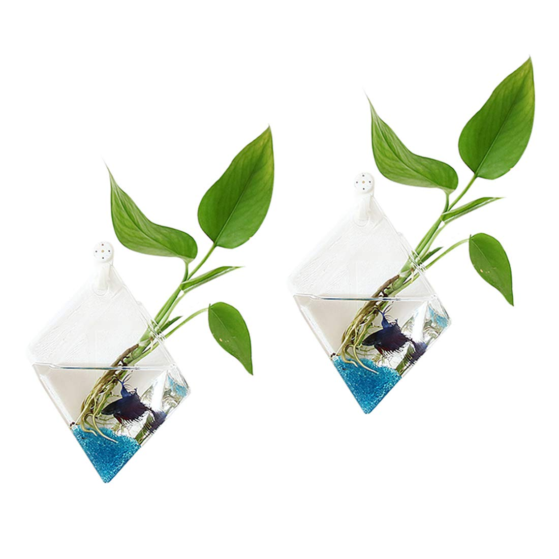 Ivolador 2PCS Wall Mount Hanging Glass Plant Terrarium Diamond Shape Perfect for Home Garden Decor