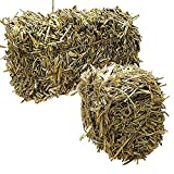 Green Vista Barley Straw Farm Pond Algae Treatment - 24 Pound Case - Treats 1/2 Acre Farm or Retention Pond for 6 Months! - 100 Percent Natural and Safe for All Fish and Wildlife