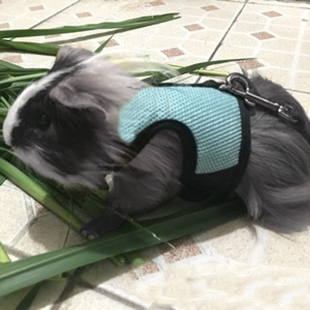 Ofanyia Hamster Rabbit Harness And Leash Set Ferret Guinea Pig Small Animal Pet Walk Lead