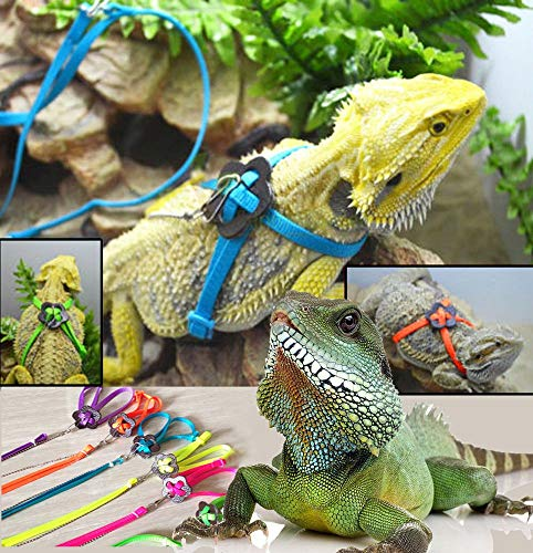 - L Adjustable Lizard Harness Leash - Multi Color Light Soft Fashion for Small Reptiles Pets Small Animal Nylon Leash(Blue)