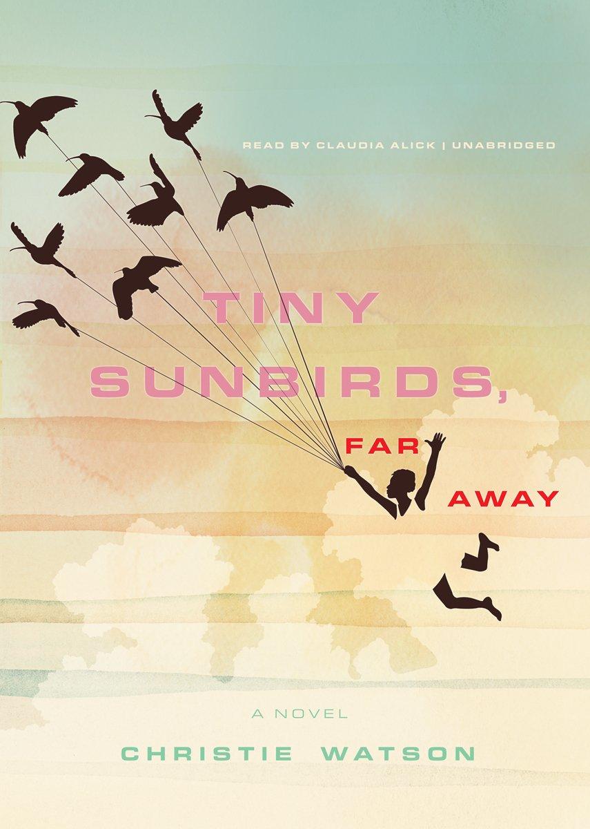Read Online Tiny Sunbirds, Far Away: A Novel PDF