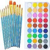 Watercolor Paint Art Set, 36 Colors Professional Watercolor Paint Set with 10 Pcs Watercolor Artist Set Brush for Watercolor